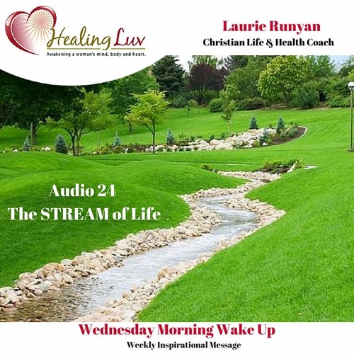 Audio 24 - The STREAM of Life and Health