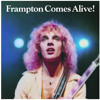 FRAMPTON COMES ALIVE Where Recorded