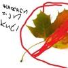 B0i$ Des Fruit$ - Its Not Rape If You It