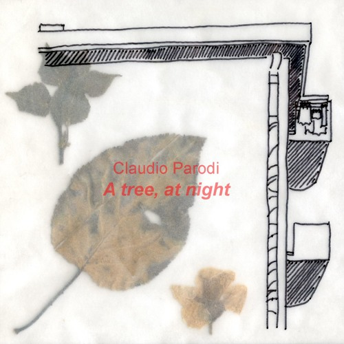 4 - Scale, Foglia Rinsecchita