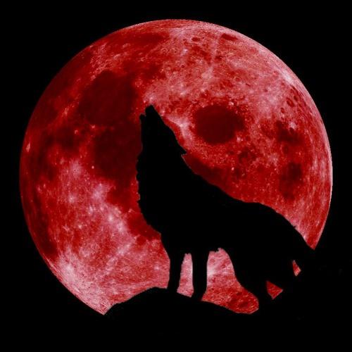 Zenflow - Red Moon