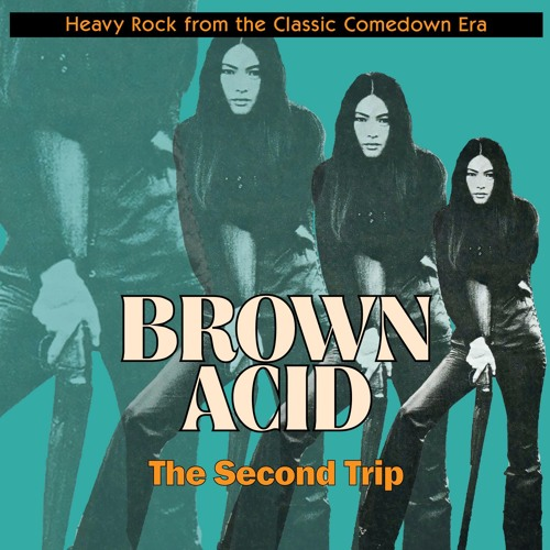 """Brown Acid """"The Second Trip"""""""