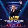 Wesley Safadão - Vou Dar Virote Portada del disco
