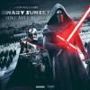 John Williams – Binary Sunset (MIKE MILL Remix)