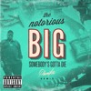 Biggie - 'Somebody's Gotta Die' (Phoniks Remix)