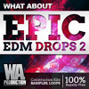 Download Epic EDM Drops 2 [15 Construciton Kits, 350+ Drum Samples & Loops, Ableton Template] Mp3
