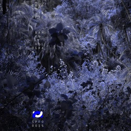 Crypto Tropic / Batu Hologram EP / out on Speaker Footage