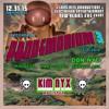 Kim Nyx DJ set at Pandemonium 3, NYE 2015 (Drop Bass Room)
