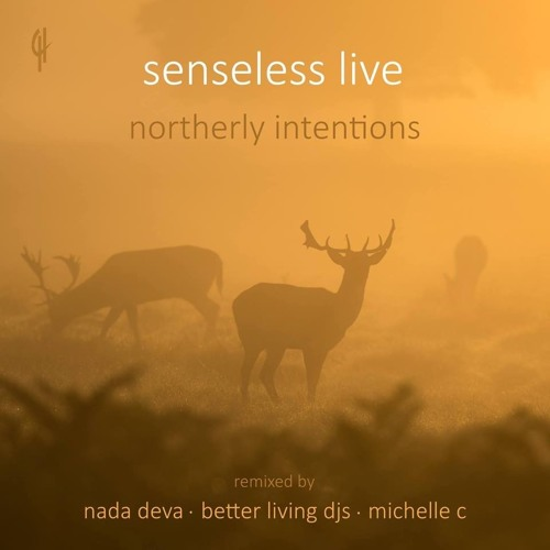 Senseless Live - Let Me Out (Better Living DJ's Remix)