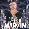 Mc Marvin - Ela Se Joga Em Cima E Quica ( DJ CARLITINHO ) - VERSÂO LIGHT