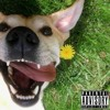 King & K - 9 Unit Posse - Who Let The Dogs Out (Feat. Lion & Hyenas)