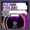Ollie Crowe & Rich James Ft. NK - Voices (Original Mix)