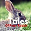 Tales Of Peter Rabbit - The Tale Of Mrs. Tittlemouse
