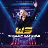 Wesley Safadão - Novinha Vai No Chão Portada del disco