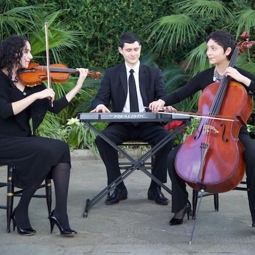 Piano Trios - Classical