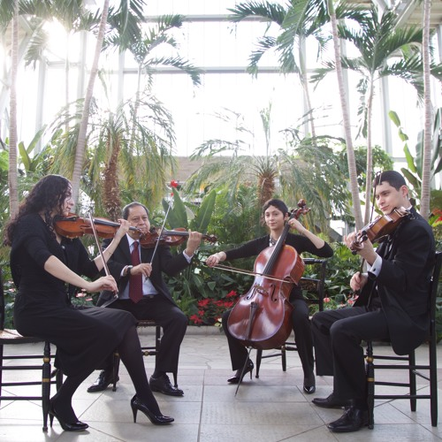 String Quartets - Contemporary