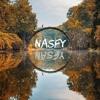 Dj Nasfy Mini Mix Electro Pop (Dj Baez recopilation)