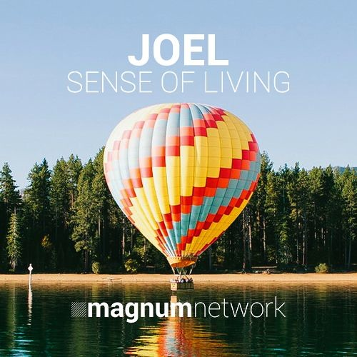 JOEL - Sense Of Living