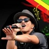 - BRUNO MARS - just the way you are (reggae version)
