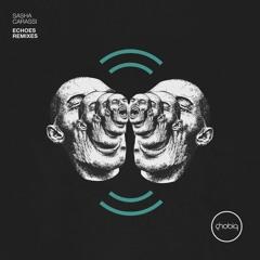 Sasha Carassi - Echoes (Layton Giordani Remix)