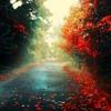 Monomyth - Encoded Loneliness (Enschway Remix) (2)