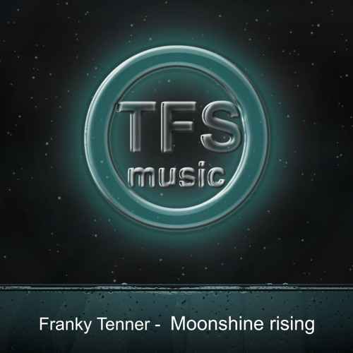 Franky Tenner - Moonshine Rising (Instrumental Ambient Chillout)