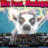 EDM Mix Feat. Madagascar