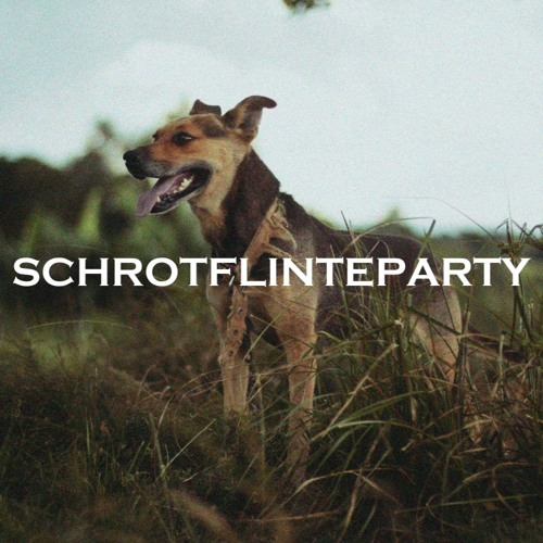 Schrotflinteparty (Free DL in description)