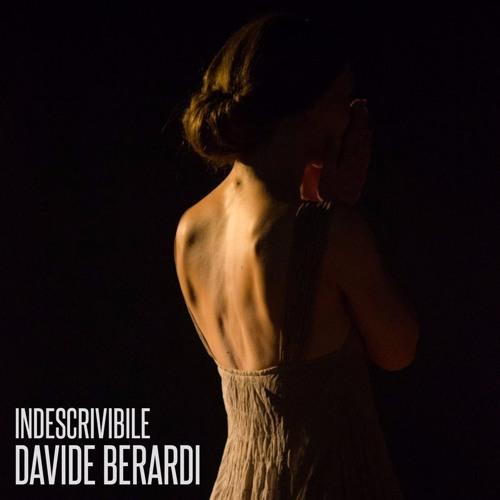 Davide Berardi - Indescrivibile