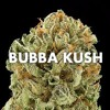 Bubba Kush ~ Vinny Skulls x Tripnotix