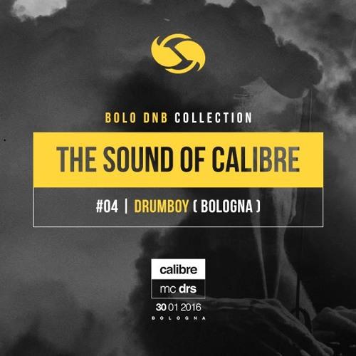 The sound of Calibre #04 - Drumboy