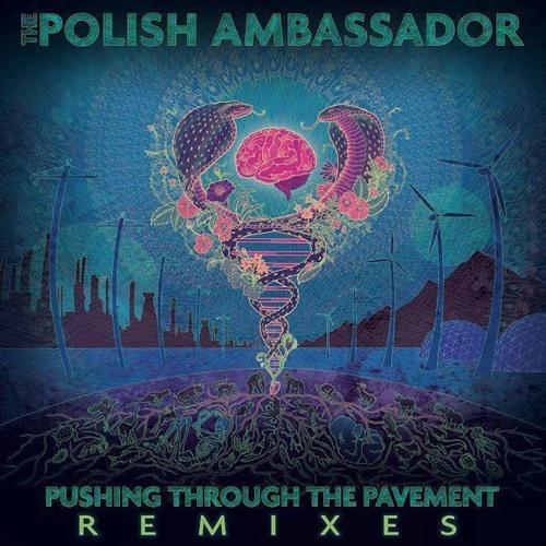 Pushing Through The Pavement (The Remixes)