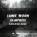 Jamie Woon Sharpness (Navigatorz Remix) Artwork