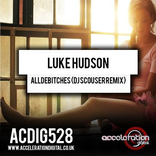 AllDeBitches (DJ Scouser Remix)