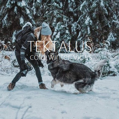 Tektalus - cold winter vibes