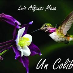 Sigo siendo un colibrí - Humilde serenata