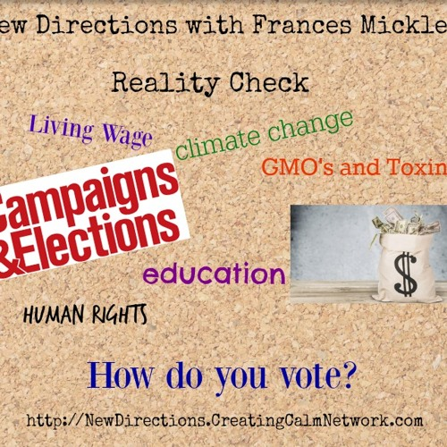 New Directions with Frances Micklem - Elections - Reality Check