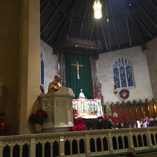 2016-01-10 Homily of Fr. Perrone (9:30 EF; Holy Family)