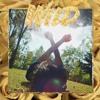 Wild (Blue Neighbourhood 1 - 3)[Troye Sivan Cover]