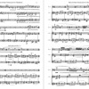 Music for Bass Clarinet and Two Vibraphones (2015)