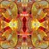 PASA - Welcome to India Vol. 3 (143-146bpm Promo Mix)