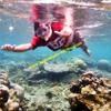 Pulau Seribu NGAYAL LAGI KALUA Feat Tony Q Rastafara
