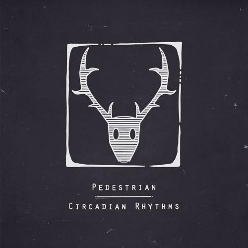 "Pedestrian ""JNT (feat. Maribou State)"" - Boiler Room Debuts"