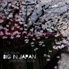 Ane Brun - Big In Japan [Ivan Spell Radio Mix]