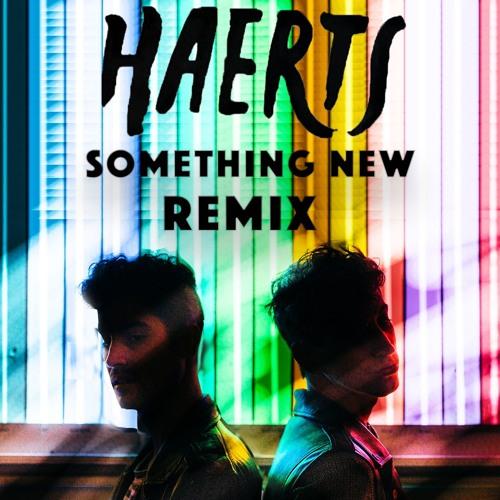 Something New (Haerts Remix)