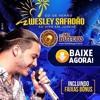 05 - Wesley Safadão - Som Do Solinho - Ao Vivo Em Jurerê - CD De Verão