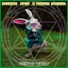 HammerHead - Chronophagie Temporelle Feat Espiway & Le Phenomene Rapanormal
