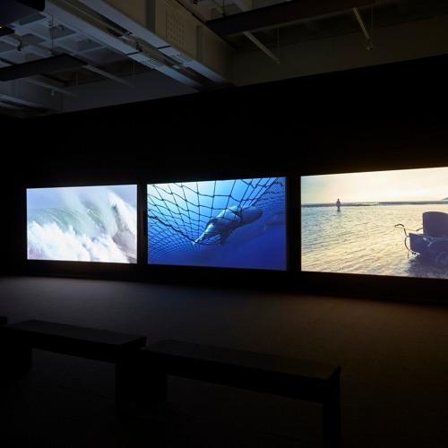 John Akomfrah - In conversation, Vertigo Sea
