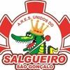 = = PRIMEIRA CACHORRA DO BAILE DO SALGUEIRO 2016 ( ( DJ GB DO SALGUEIRO ) )