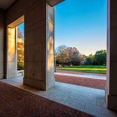What do UVA Law admissions officers look for in personal statements and interviews?